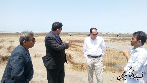 بازدید فرماندار گمیشان از عملیات زیرسازی جاده دسترسی ساحل چارقلی