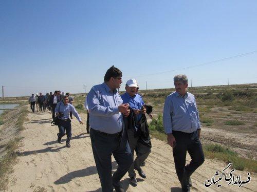 بازدید سفیر ترکمنستان از مجتمع پرورش میگوی گمیشان