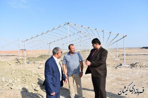 بازدید فرماندار گمیشان از پیشرفت پروژه پرورش شترمرغ