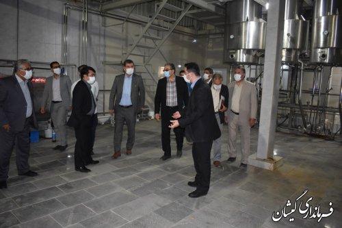 بازدید معاون هماهنگی امور اقتصادی استانداری گلستان از ناحیه صنعتی سیمین شهر